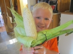 The first sweet corn!