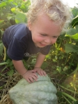 Zev and one of our bigger blue hubbard squash