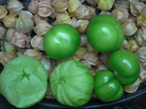 Tomatillos add a fruity edge to roasted or grilled green salsa