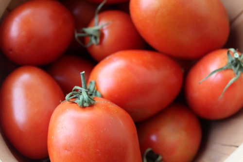 thick flesh and fewer seeds make paste tomatoes ideal for sauce