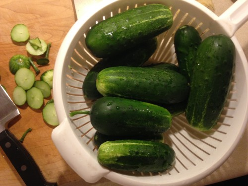 Dave's adventures in pickle land
