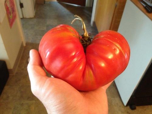 we heart tomato season