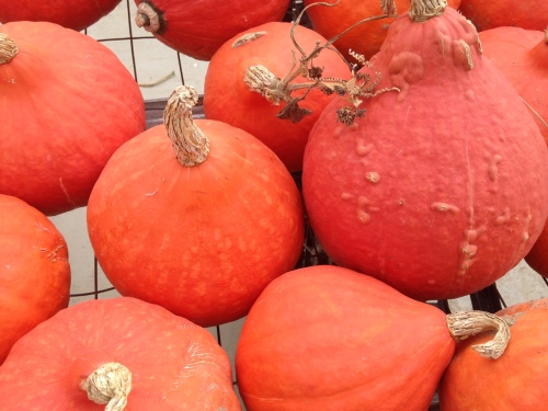 sweet flesh from the kabocha squash makes the best pumpkin pie filling